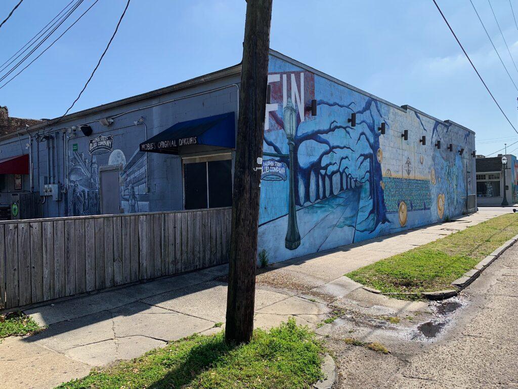 Img 4729 Mardi Gras, Mobile, Murals, Port City