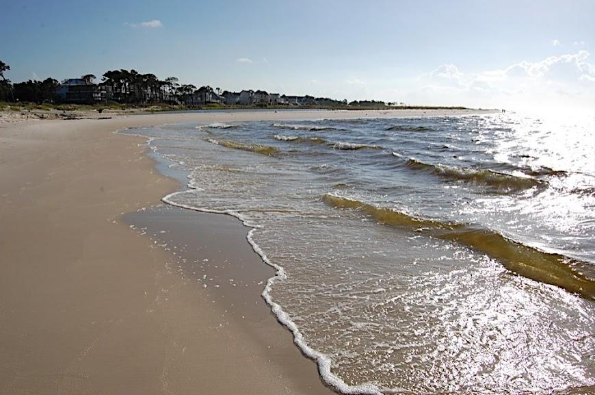 Sand &Amp; Shore At Dauphin Island.