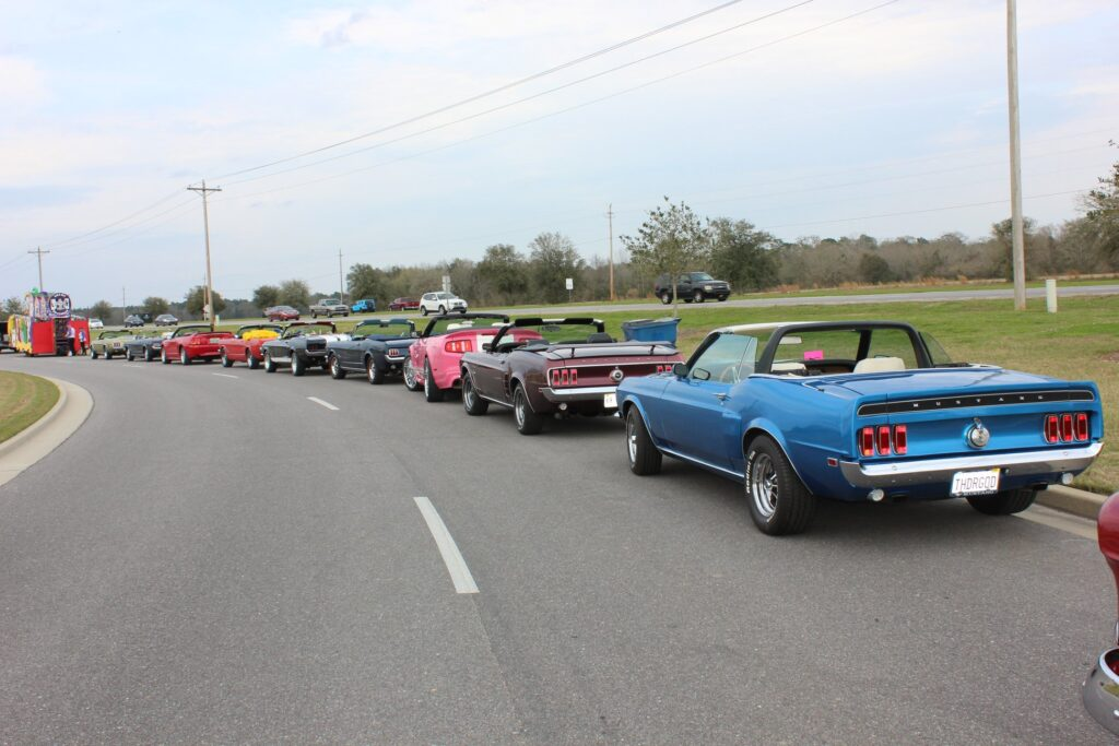 Gulf Coast Mustang