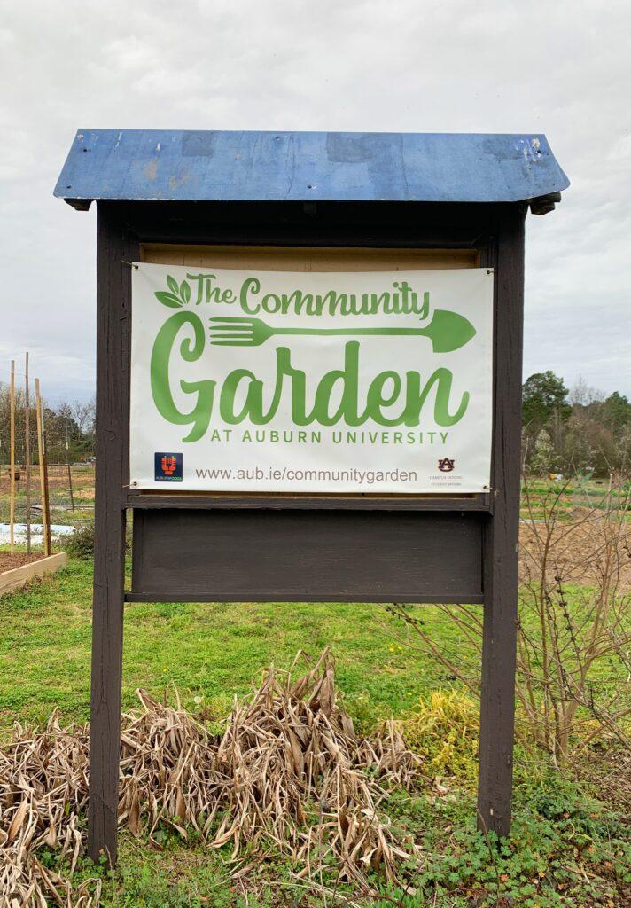 Img 8601 Auburn, Auburn University, Community Garden, Farmers Market, Hornsby Farms, Ogrows, Opelika, Produce
