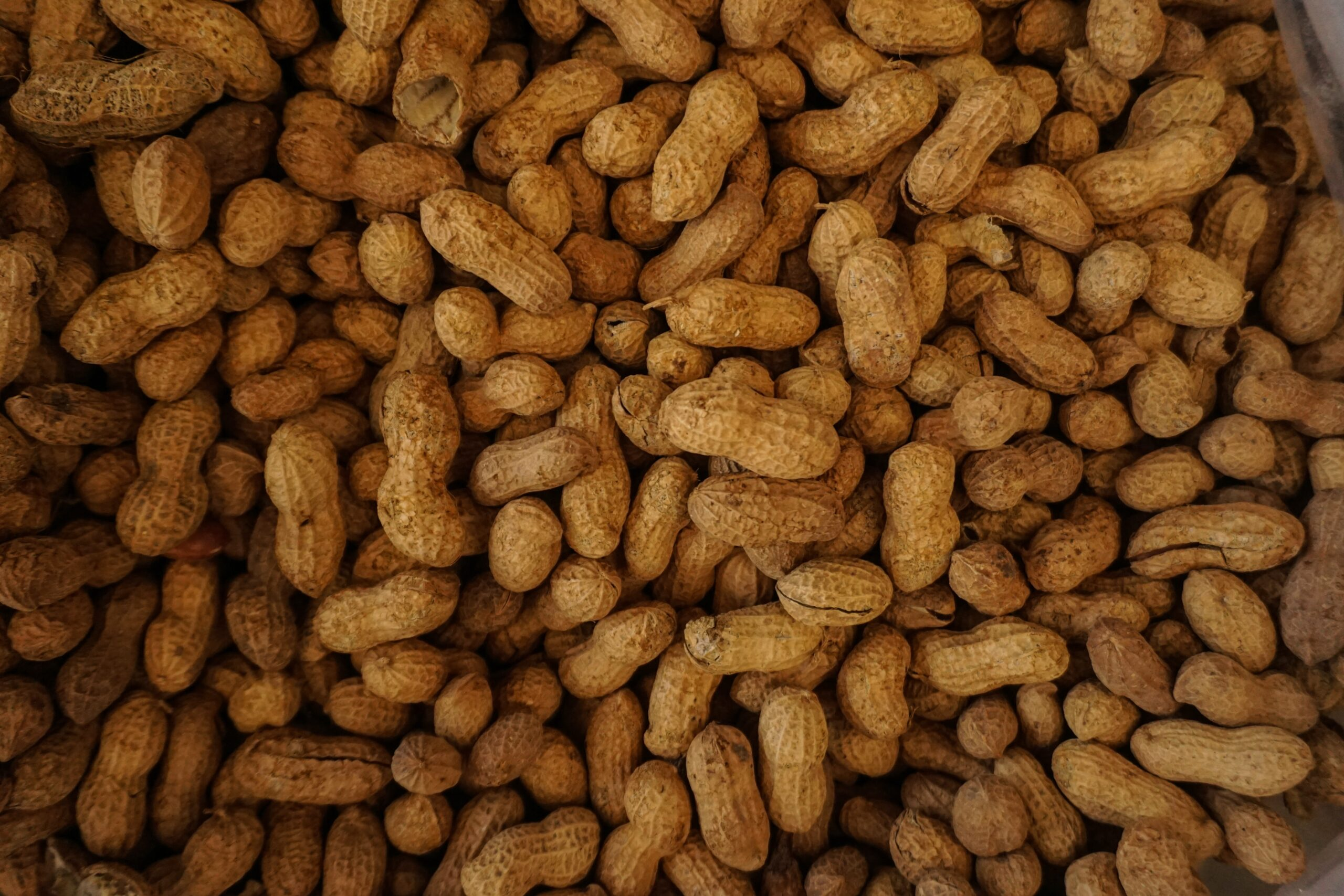 Pile Of Dried Peanuts