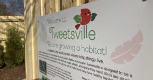 Tweetsville