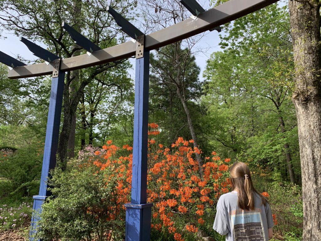 The Arboretum Flowers