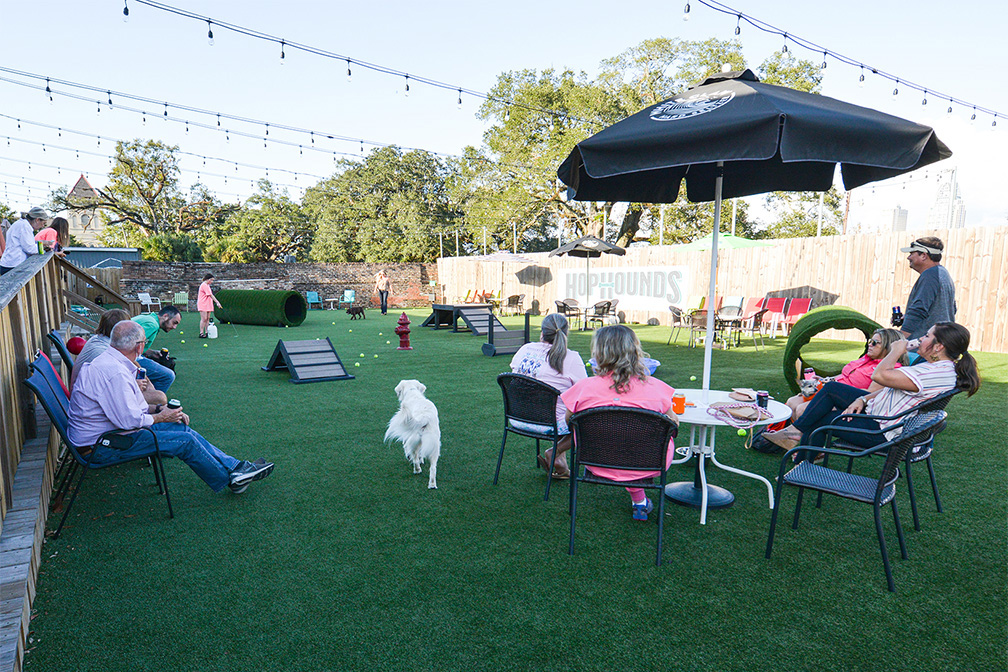 Why HopHounds is about to be your dog's new favorite Mobile bar