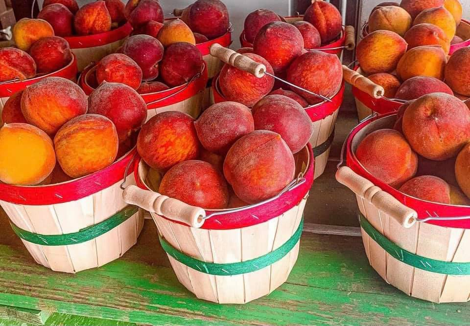 August is National Peach Month and here's how to celebrate in Alabama